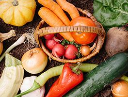妊娠しやすい体のベースになる健康な体を作るために特に必要な栄養成分の1日の目安量