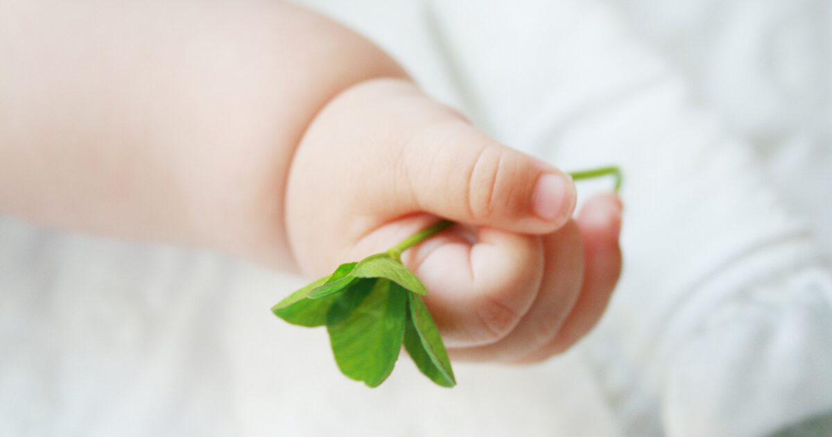 新鮮胚と凍結胚との違いは?