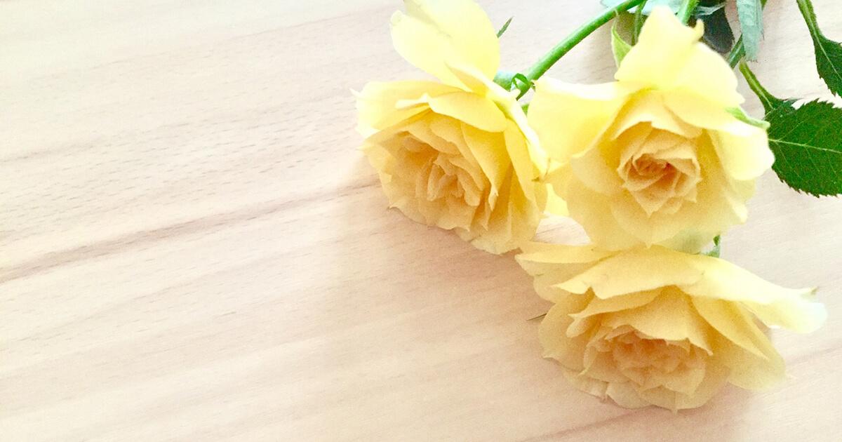 妊活ブログ:着床にかかわる卵管のはなし
