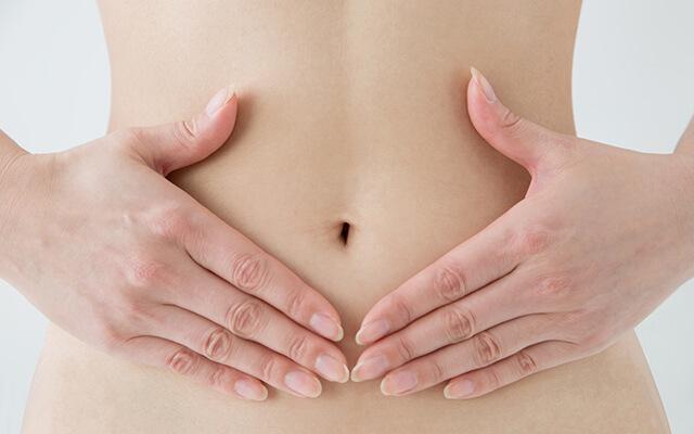 小腸の吸収の鍵になるものは